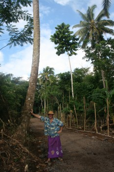 Dennis with Debbie's coconut tree