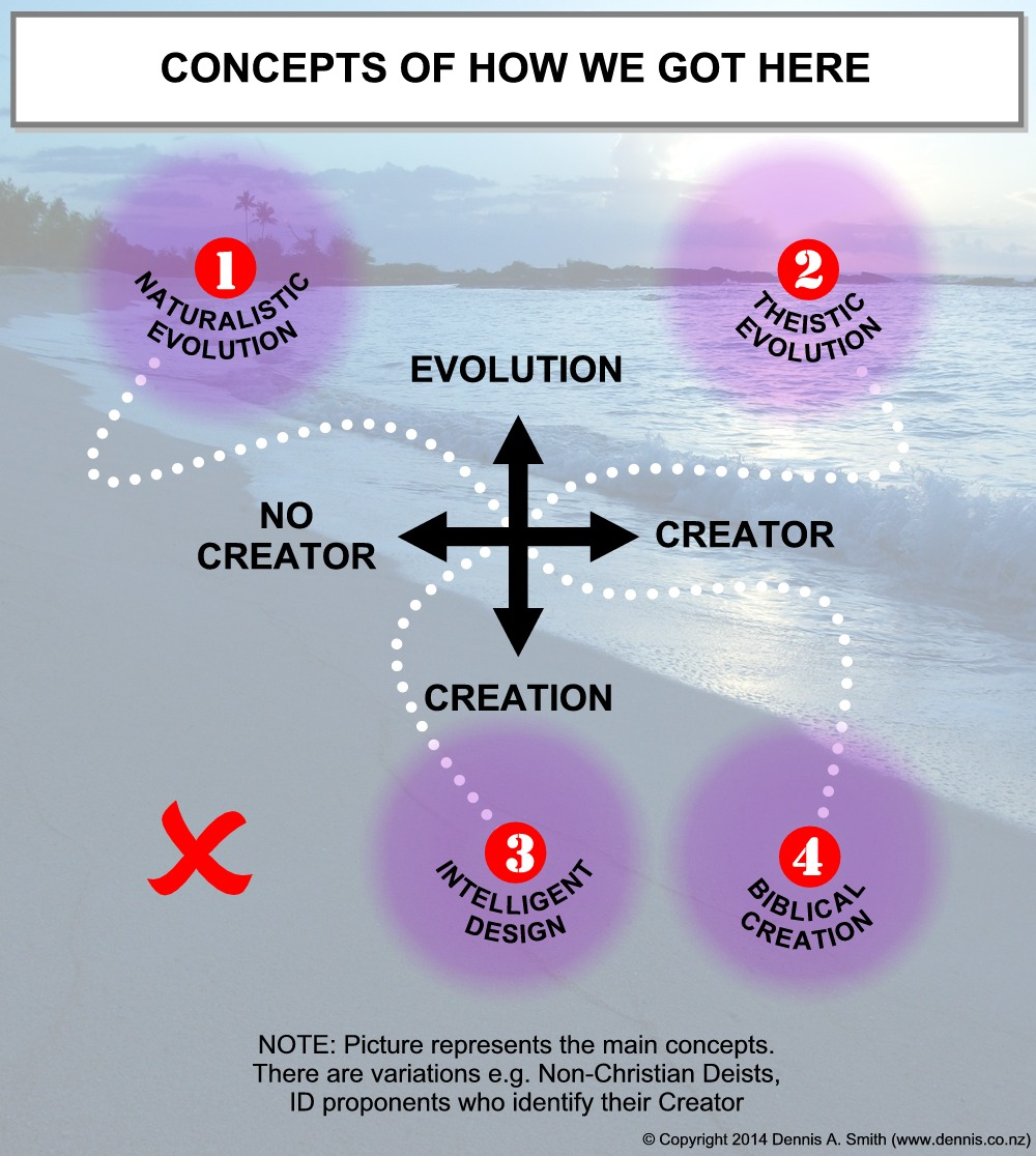 Evolution & Creation – the Basics