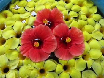 Floating flowers - a form of art, is a simple way that Sinalei adds value, but there are ways to increase the perceived value.