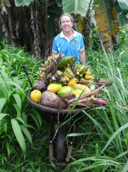 A Volunteer with plantation produce - given, not sold.