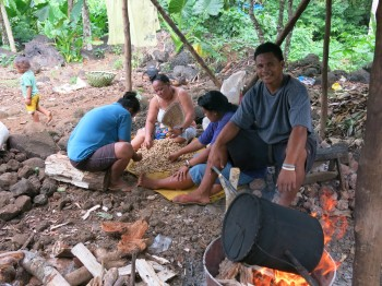 Roasting Peanuts in Paradise - a fascinating trip into the rural Samoa for some of our guests, and a potential for tourism value-adds