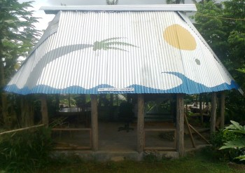 The 'Flying' Coconut - not of the Samoan Rugby Union winger kind! Designed and implemented by yours truly. Who would think of doing a mural on the roof of a guest house?