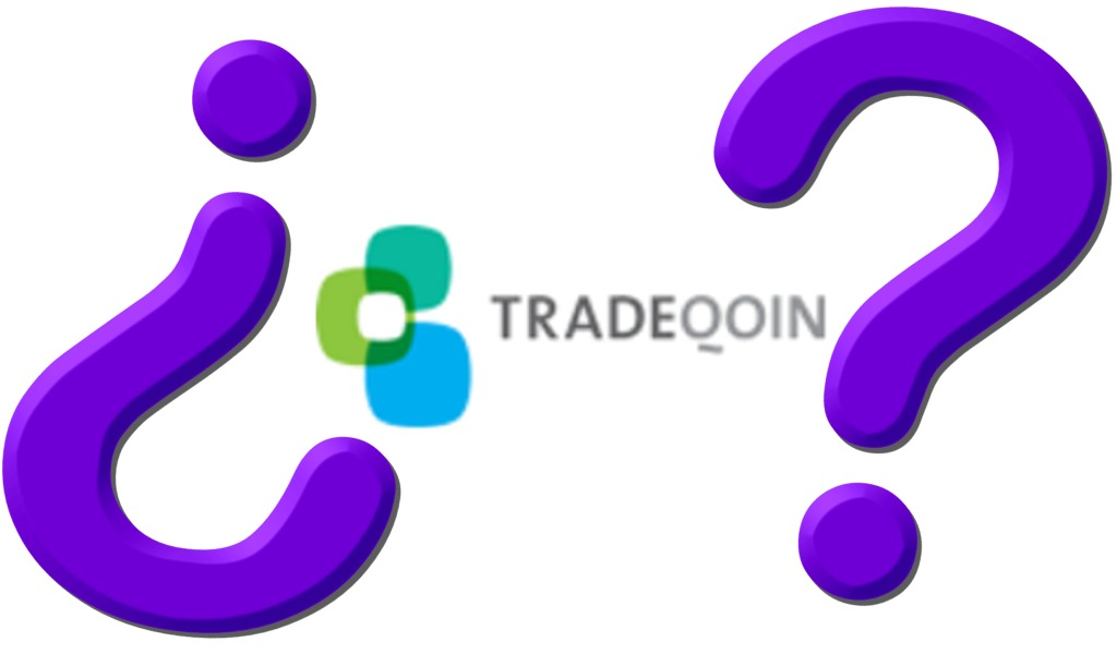 Questions for Tradeqoin Directors